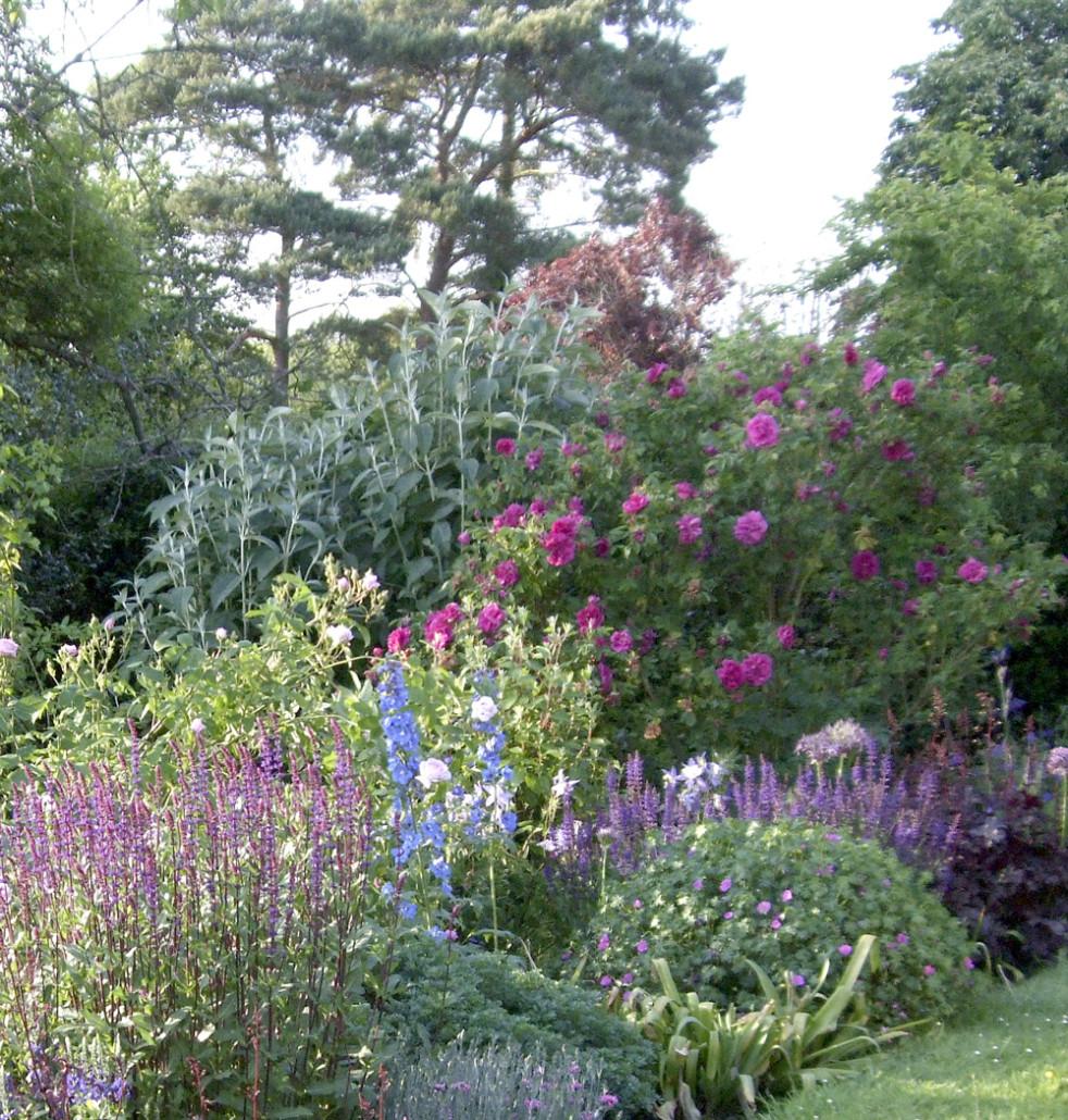 design cottage garden blues ekenasfiber johnhenriksson se u2022 rh ekenasfiber johnhenriksson se